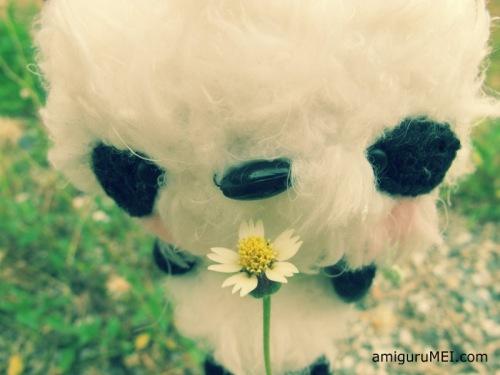 bear crochet amigurumei prince